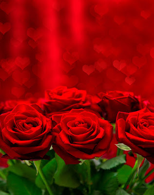valentines-day-14-de-febrero-amor-y-amistad