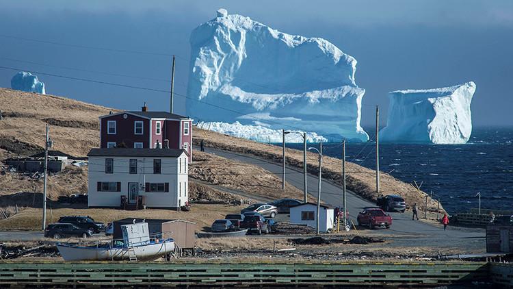Un iceberg gigante se instala en la costa de Canadá (video, fotos)
