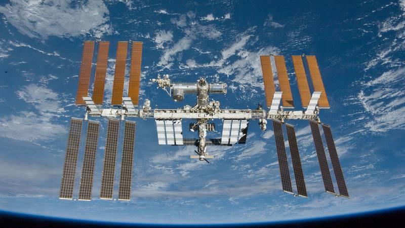 """""""Es como una escena de Alien, justo antes de que resuciten"""": un video muestra cómo duermen astronautas en el espacio"""